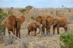 Kenya - Top travel destination
